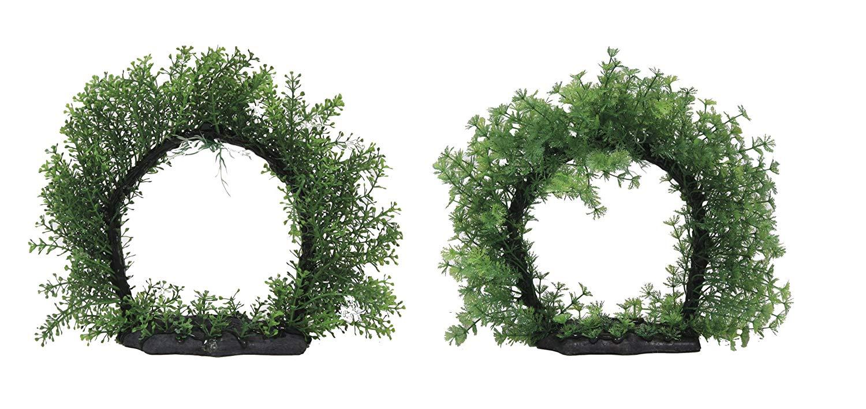 AMTRA Glossostigma Circle plastikinis augalas 26cm