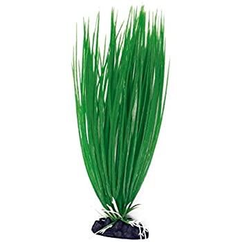 AMTRA ACORUS plastmasinis augalas didelis 23cm