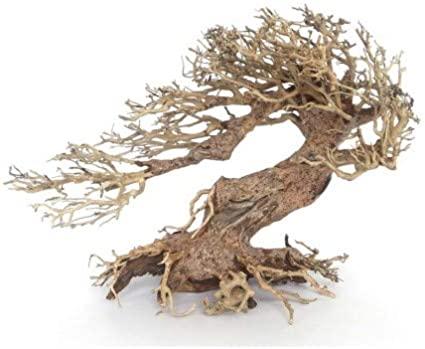 AMTRA dekoracija WOOD ORIENTAL natūralus medis 3 S