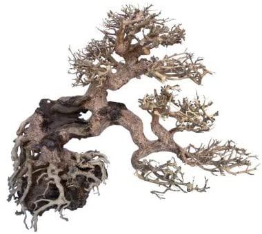 AMTRA dekoracija WOOD ORIENTAL natūralus medis 7 S