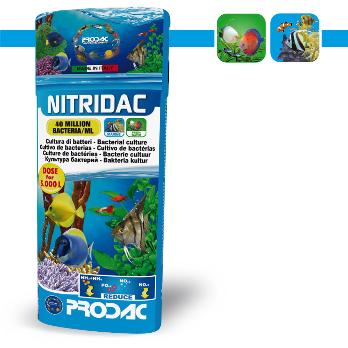 PRODAC NITRIDAC suardyti organines medžiagas ir perdirbti amoniaką 250ml