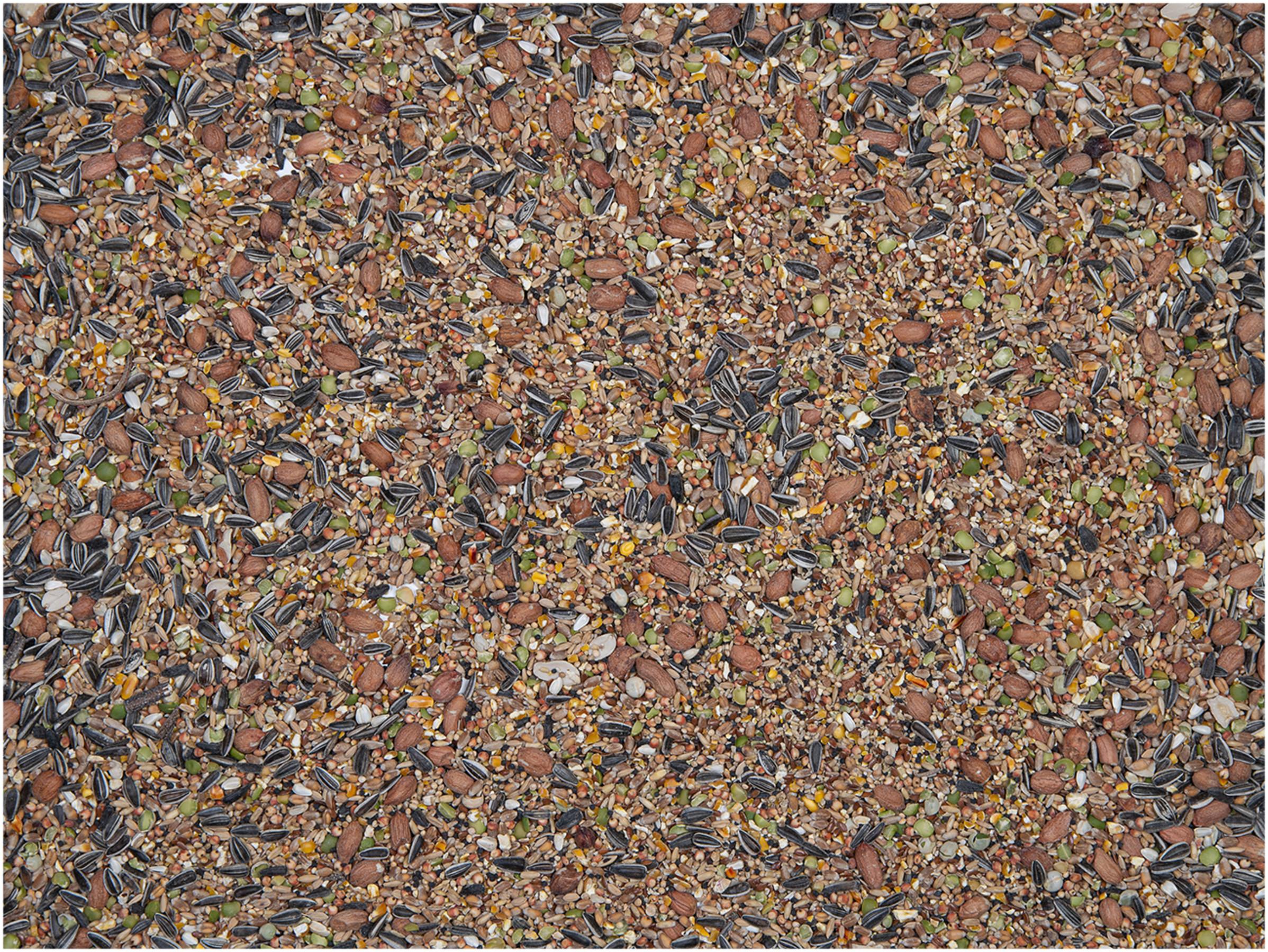 VADIGRAN WINTER MIX lesalas lauko paukščiams 18kg