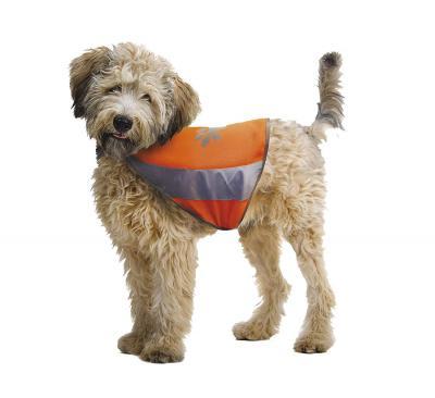 CROCI atspindinti liemenė šuniui XL