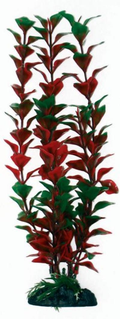 AMTRA LIUDWIGIA plastikinis augalas didelis 23cm
