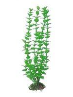 AMTRA ROTALA plastmasinis augalas vidutinis 17cm