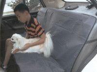 Patiesalas ant automobilio galinių sėdynių